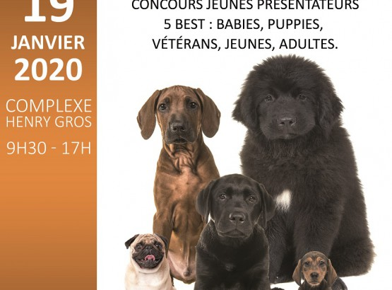 exposition_canine_nationale_2020.jpg